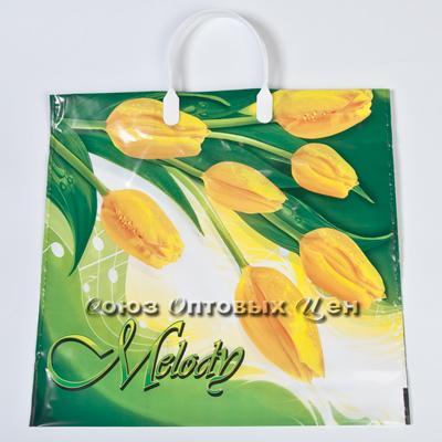 пакет с пласт. руч. 38*35 МЕЛОДИЯ 10/100